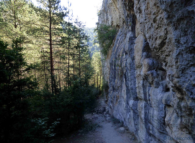 El Toll (Saleretes Nord) -06- Vista Pared desde acceso desde Saleretes (19-09-2015)