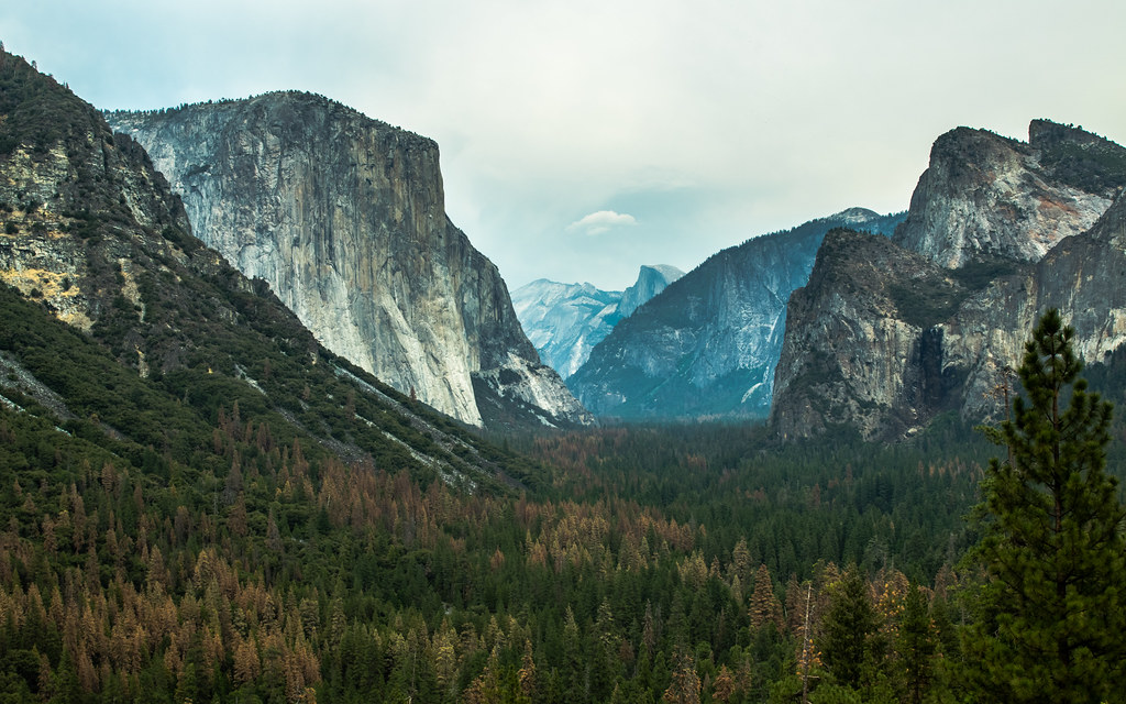 El Capitan & Cathedral Rocks from Tunnel View, Yosemite Valley