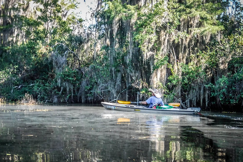 Lowcountry Unfiltered at Okefenokee-175