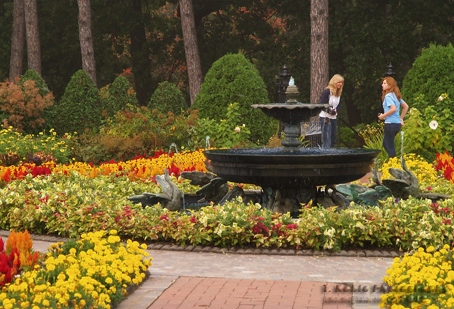 Munsinger And Clemens Gardens Flickr Photo Sharing