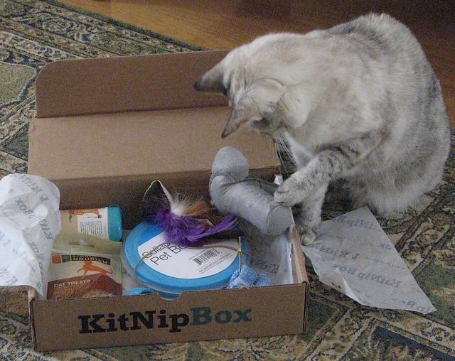 Kit Nip Box