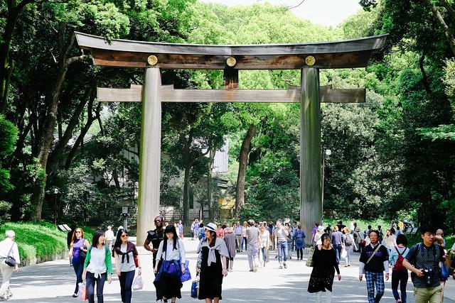 初夏,東京遊拍 | 11