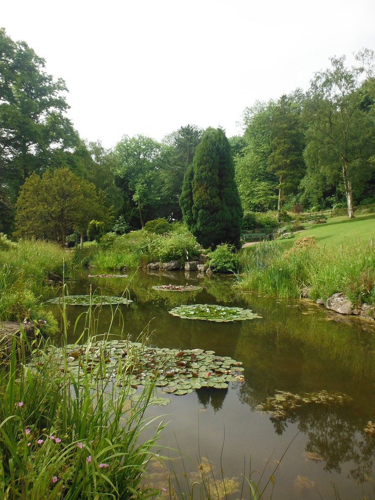 Avenham Park 4