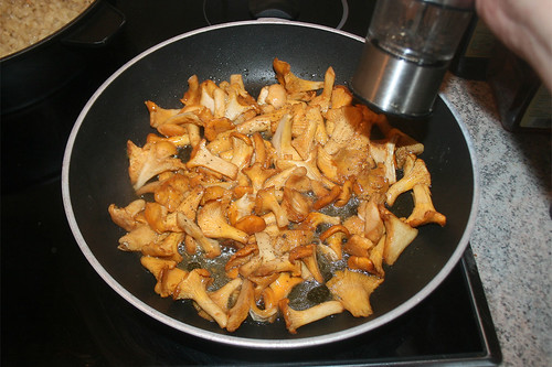 41 - Pfifferlinge mit Pfeffer & Salz würzen / Season chanterelles with pepper & salt