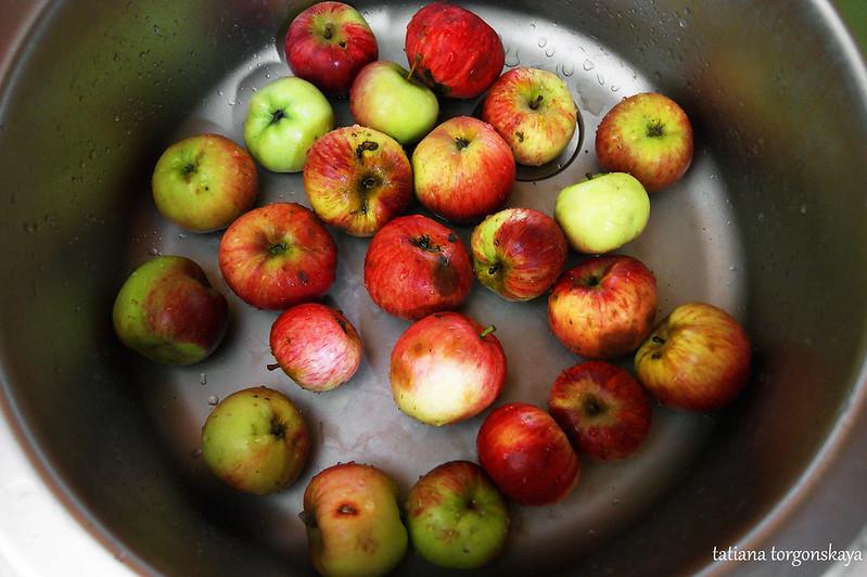 Свежие яблочки из сада
