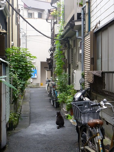 jp16-Tokyo-Yanaka-Quartier-j3 (6)