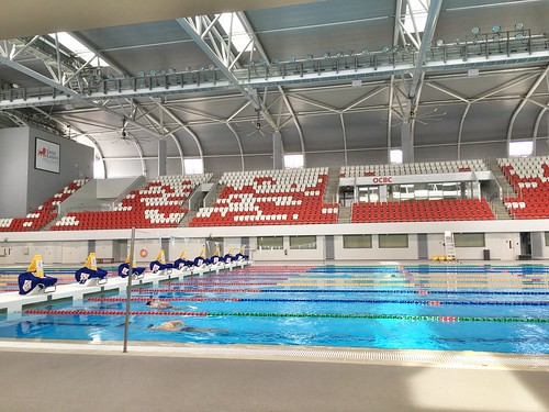 competitive pool, OCBC Arena, Singapore Sports Hub