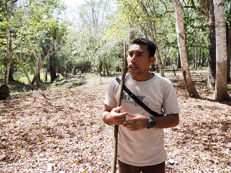 印尼科摩多國家公園 Labuanbajo & Komodo National Park, Indonesia
