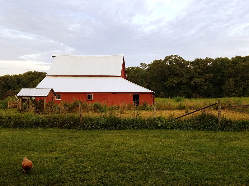 Spence Farm