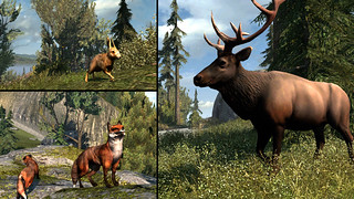 Assassin's Creed III on PS3: Animal Collage | by PlayStation.Blog