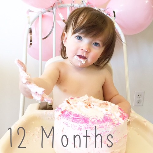 Elle Evergreen: 12 months