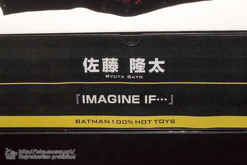 BATMAN100_HotToys_2-753
