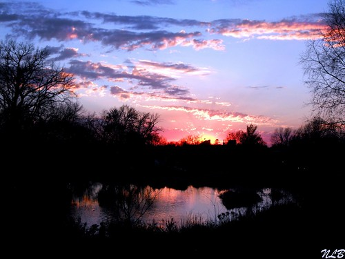~ May I never miss a sunset because I am looking down ~ | by Purpletree..(Nancy Lee)
