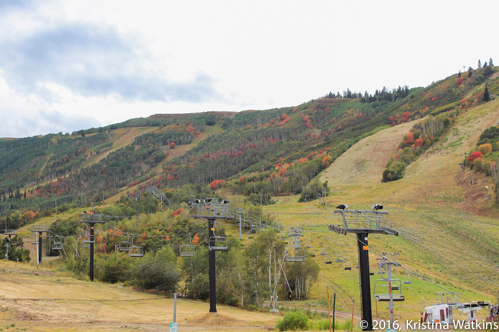 Being a Leafer in Park City-10