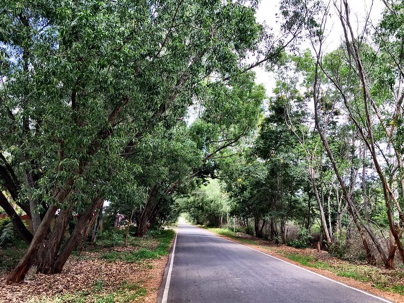 Zen roads