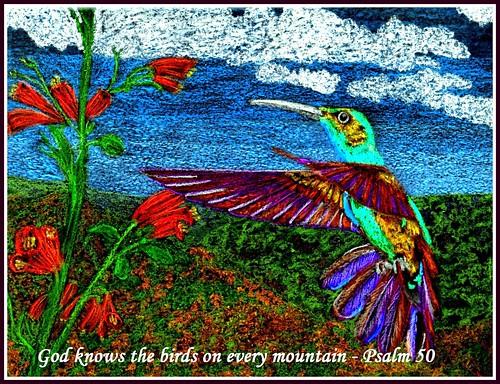 Psalm 50