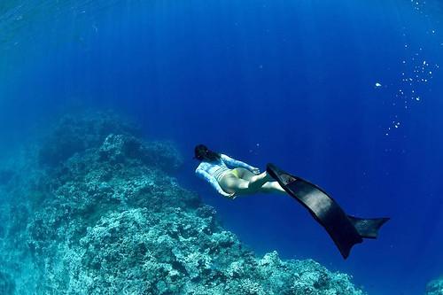 Exploration under the sea
