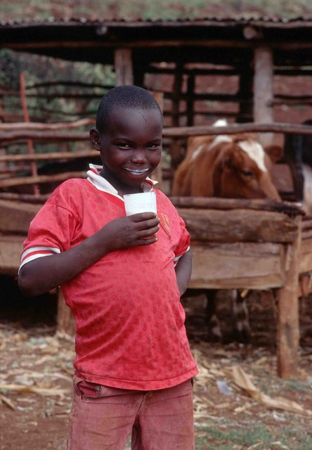 Kenya farm boy drinking milk