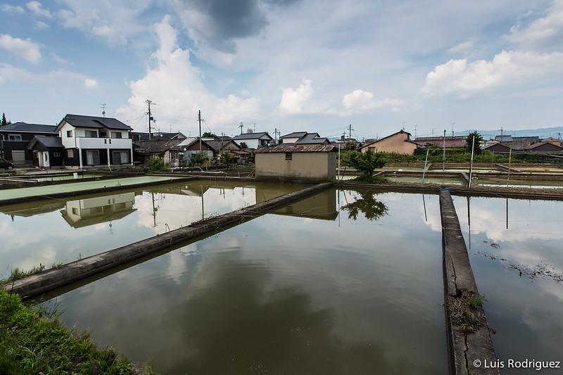 Yamato-Koriyama-74