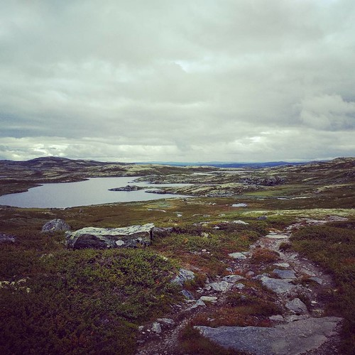 All alone in the world ️ -- 2016 Norway trip #hiking #naturelover #naturelovers #outdoors #nature #getoutside #norway #wearenordic #norge #ilovenorway #visitnorway #bergsjøstølen #picoftheday #photooftheday #photoofday #travelblog #belgianblogger #travel