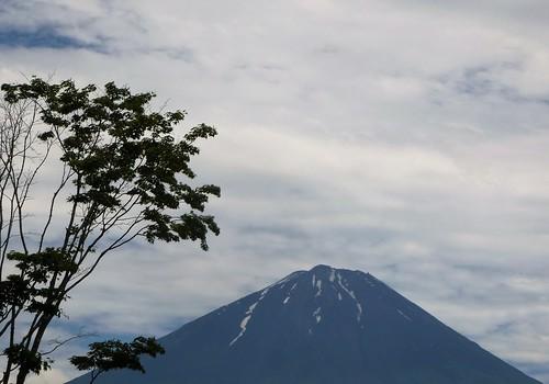 jp16-Fuji-Saiko-Village (15)