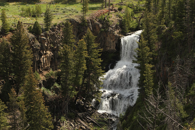 Undine Falls: Yellowstone National Park