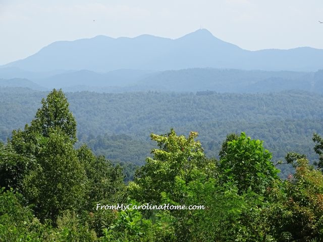 Sky Top Orchard | From My Carolina Home