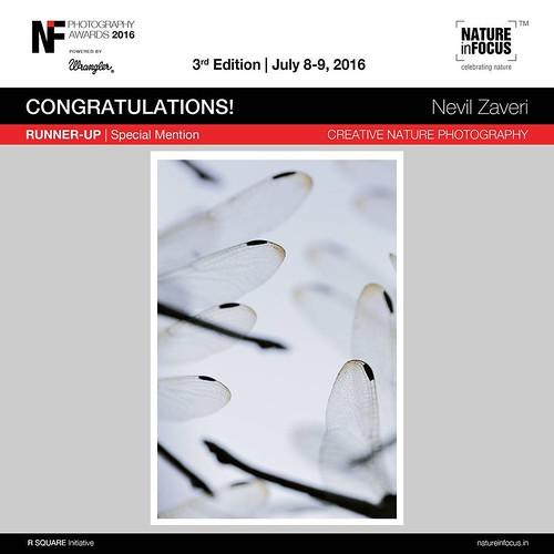 NIF award