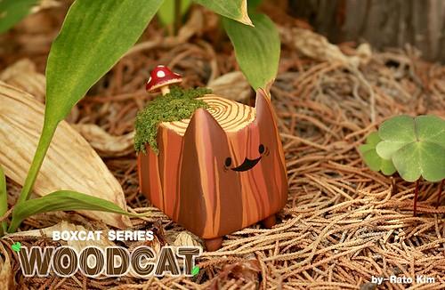 Rato Kim WoodCat 1
