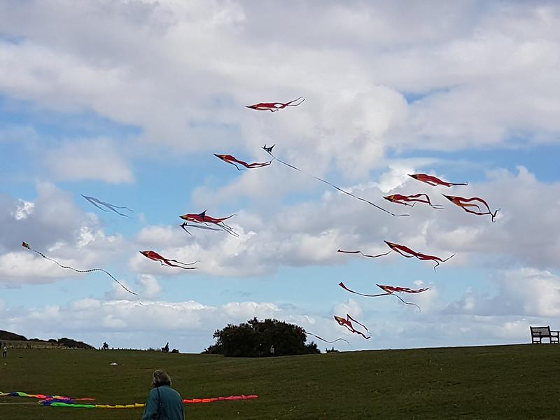 Flotails over Frinton
