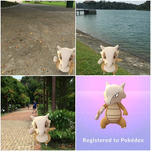Pokemon Trainer tour of Singapore: Cubone at MacRitchie Reservoir Park