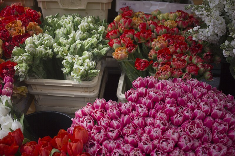 columbia road, columbia road flower market, colombia rd, colombia road, london flower market, flowers, florals
