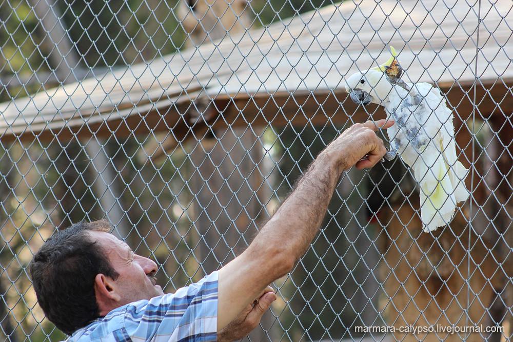 İzmir zoo-2130