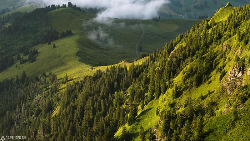 The ridge - Strick