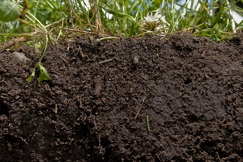 See what healthy soil looks like | by NRCS Soil Health