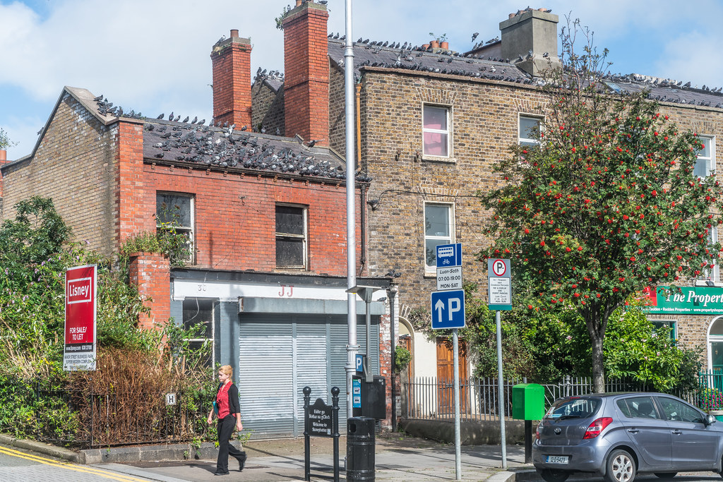 DERELICT HOUSE IN STONEYBATTER AREA OF DUBLIN [30 MANOR STREET - THE PIGEON PROBLEM IS GETTING WORSE]-119946