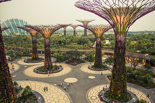 Gardens by the Bay | by kirainet
