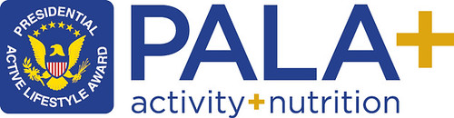 PALA Logo | by PlayStation.Blog
