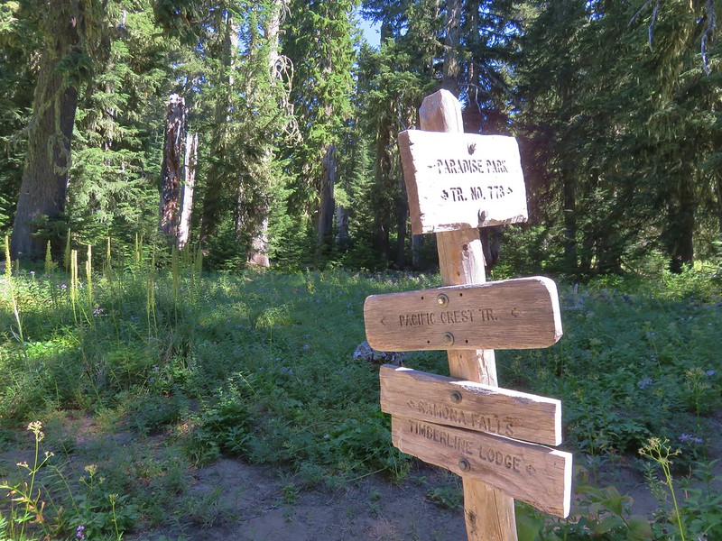 Paradise Park Trail junction with the Pacific Crest Trail