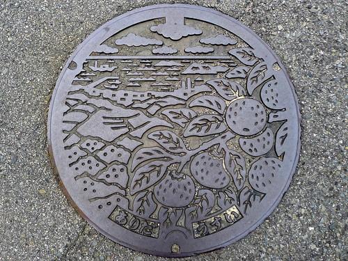 Arida Wakayama, manhole cover (和歌山県有田市のマンホール)