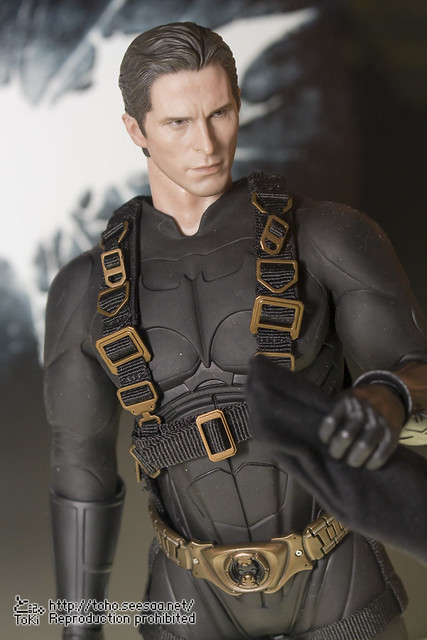 BATMAN100_HotToys_2-106