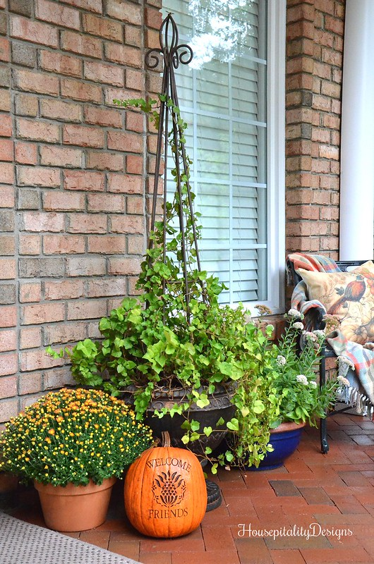 Fall Front Porch - Fall Mums - Ivy Topiary - Housepitality Designs