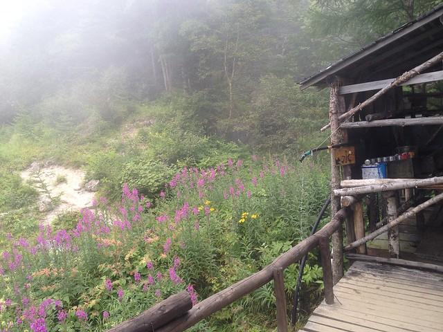 鳳凰山 鳳凰小屋 水場