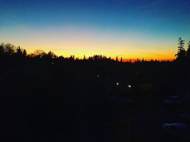 Last night's beautiful sunset.