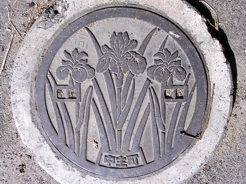 Chuzu Shiga, manhole cover 2 (滋賀県中主町のマンホール2)