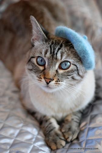 chun in blue beret