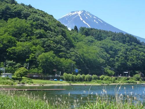 jp16-Fuji-Kawaguchiko-Nord-Promenade (12)