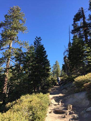 YosemiteSentinel Dome-4