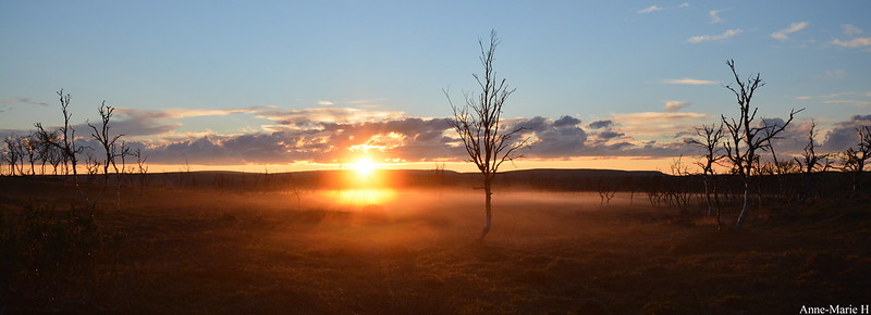 usva-auringonasku-tunturi