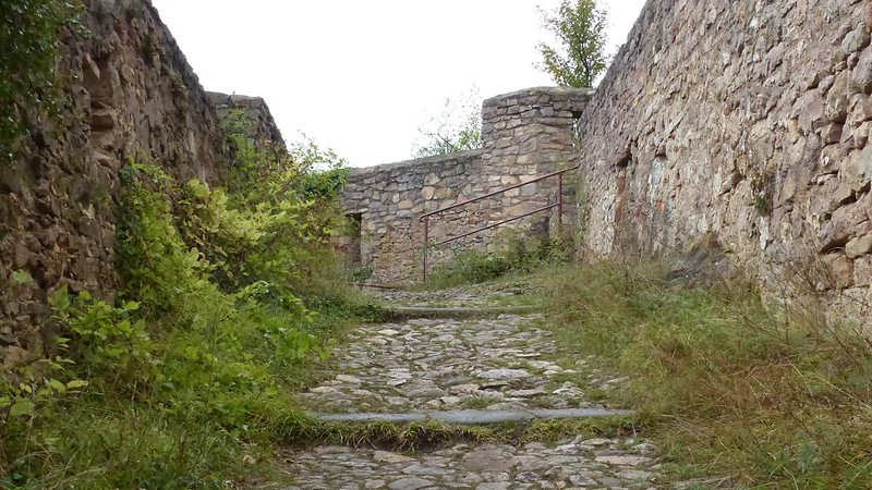 Burgruine Rheingrafenstein